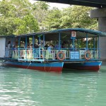 Bohol Tours and Tour Packages Loboc River